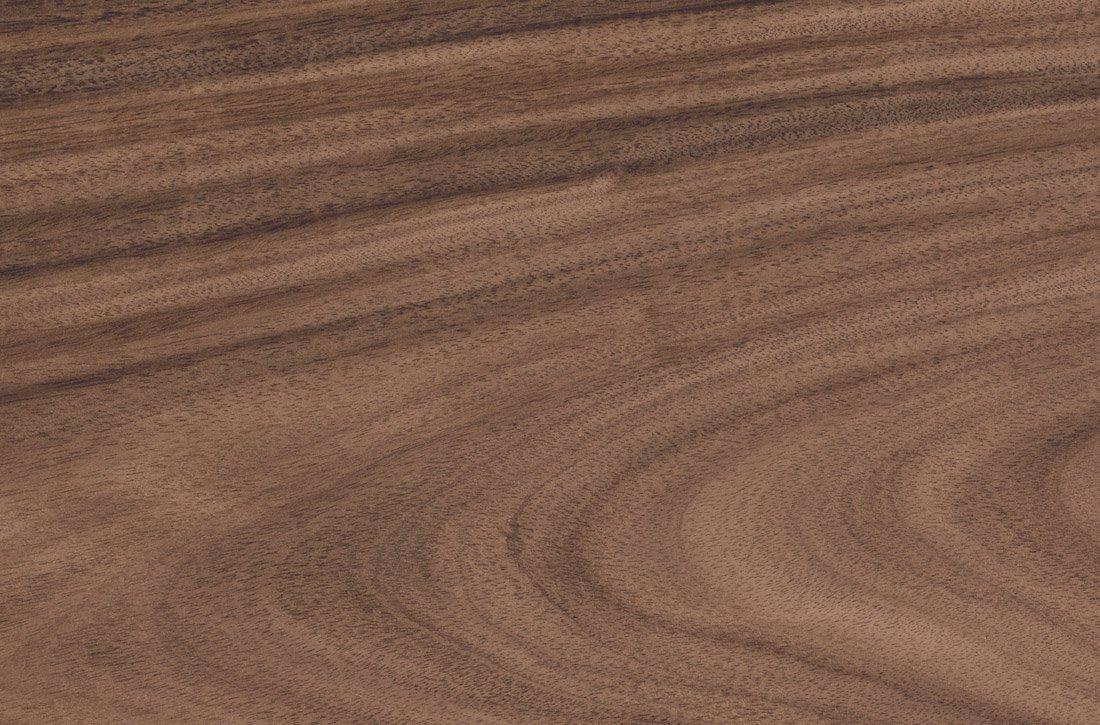 Walnut (American Black)